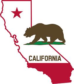 California-Flag-gun safe